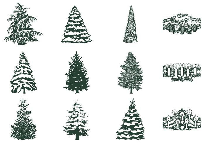 Winter Tree Vector and Candle Vector Pack