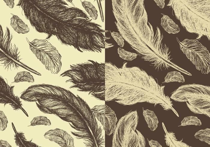 Seamless Hand Drawn Feather Vector Pattern Pack