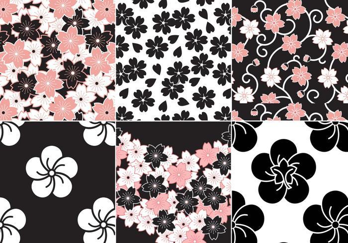 Sakura Flower Vector Pattern Pack