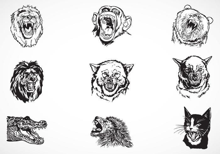 Fierce Animales Vector Pack