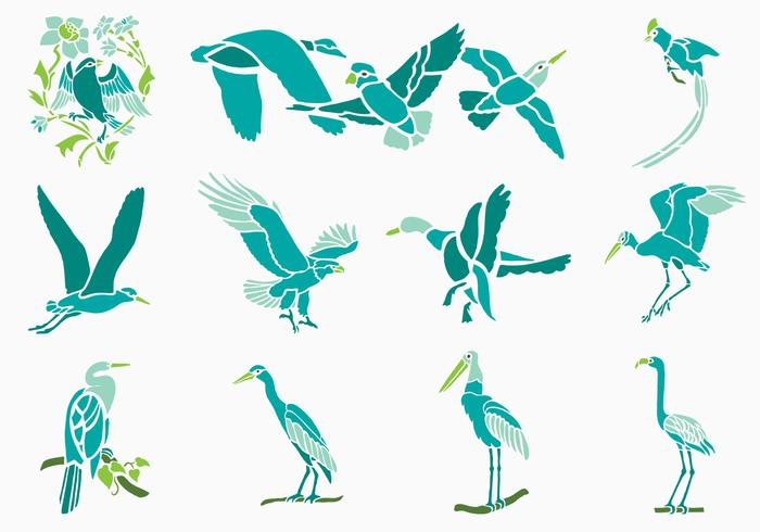 Tropical Bird Vector Pack