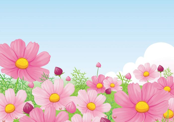 Beautiful Pink Daisy Wallpaper Vector