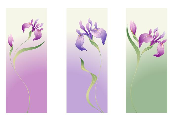 Iris Flower Vector Banner Pack