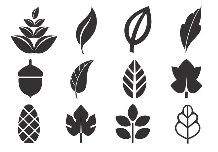 Abstract Leaf Vector Pack