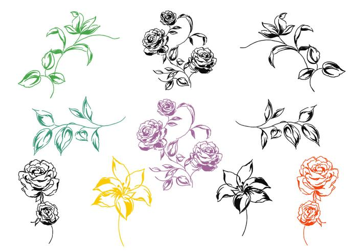 Hand Painted Floral Vector Pack