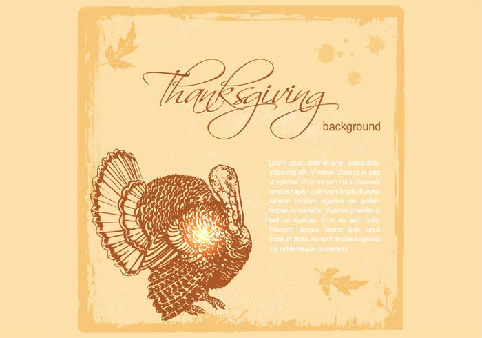 Thanksgiving Turkey Vector Background