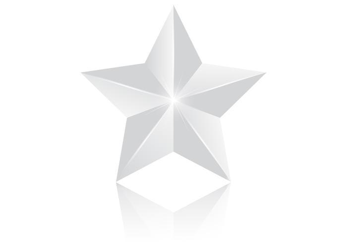 3D Silver Star Vector