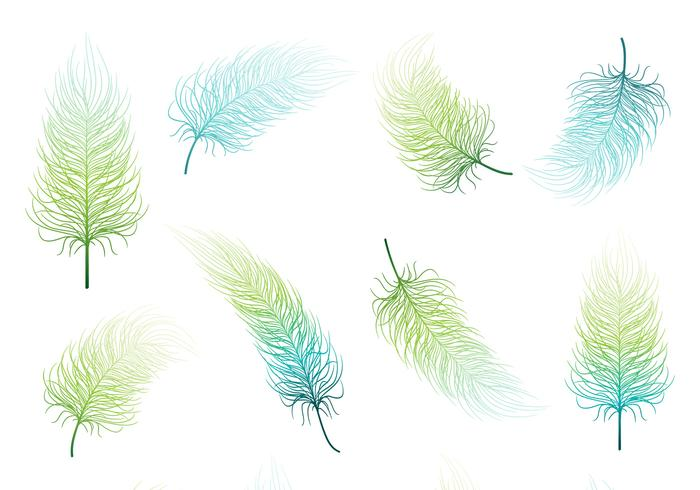 Blue Green Feather Vector Set