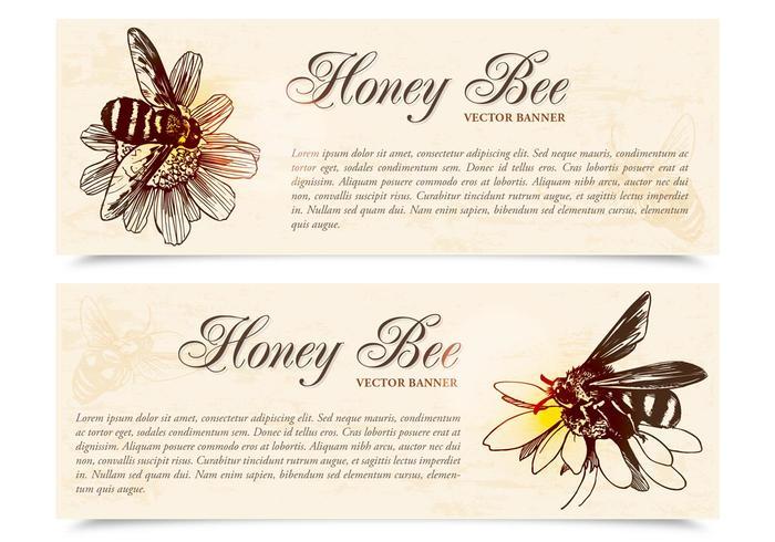 Honey Bee Banners Vector Set