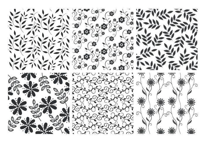 Floral Leaves Backgrounds Vector Set