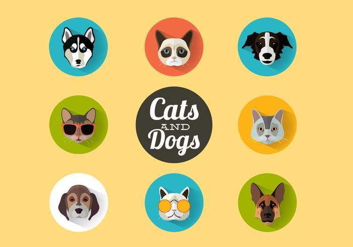 Katzen und Hunde Portraits Vektor