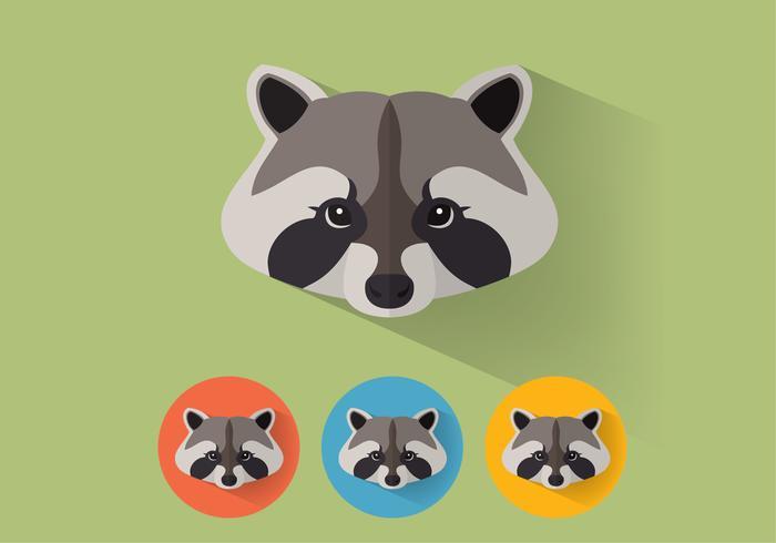 Retratos del vector del mapache