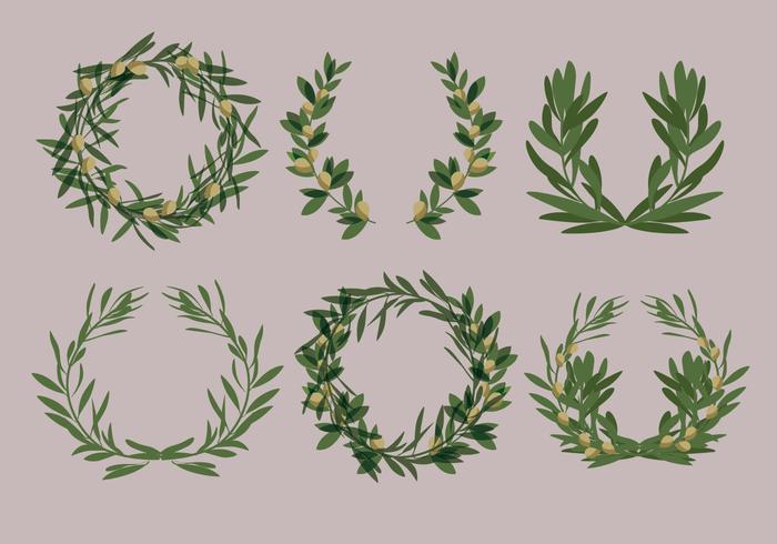 Vecteurs de couronnes d'olivier au laurier