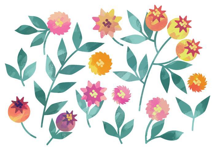 Vector Watercolor Rosehip Elements