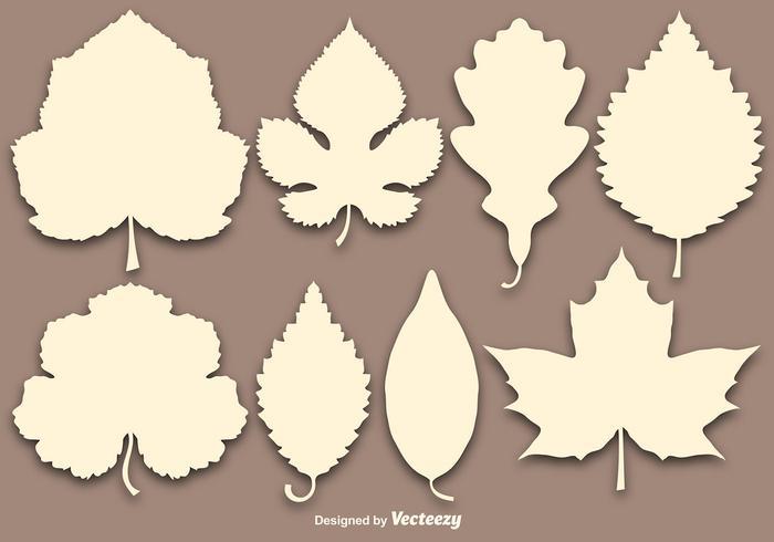 Collection de vecteur de feuilles