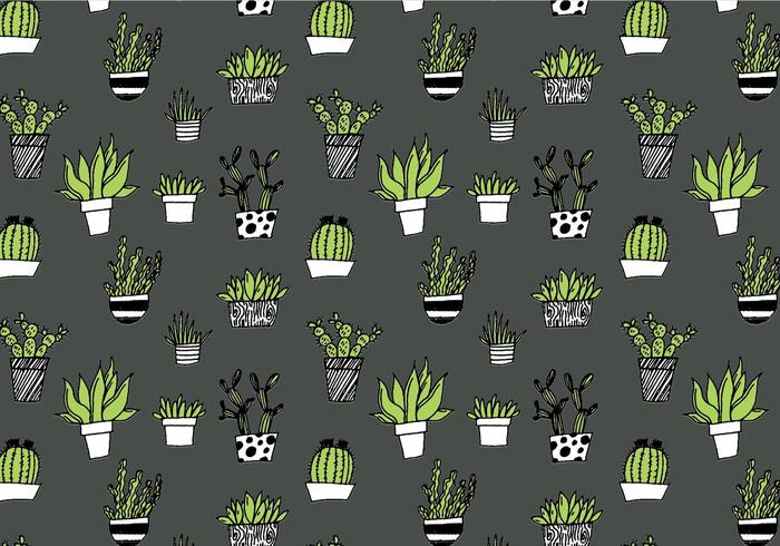 Succulent Repeating Pattern