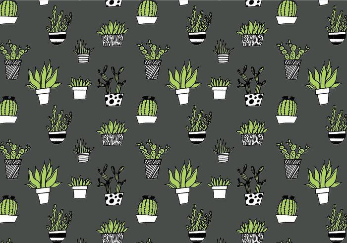 Padrão repetitivo de Succulent