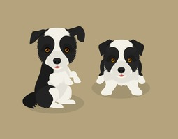 Free Vector Border Collie Puppies