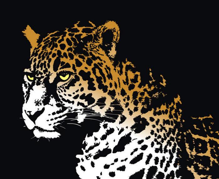 Jaguar Predator Black Animal Muzzle Art Wallpaper: Free Vector Art At Vecteezy