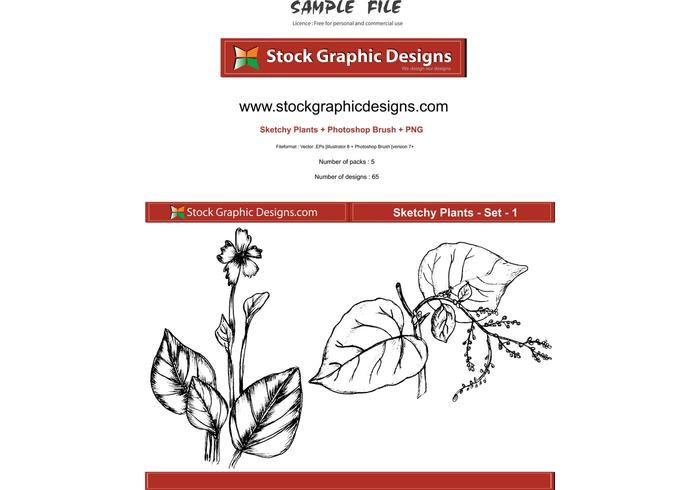 Skizzenhafte Pflanzen