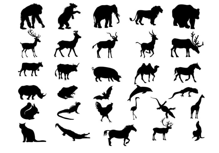 Amazing Animal Silhouette Vectors