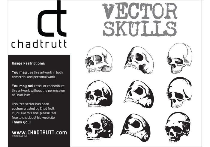 Human Skulls 3