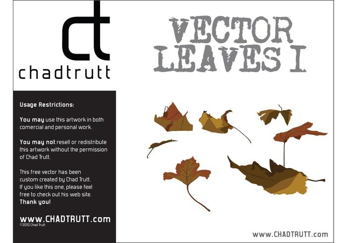 Leaves 1