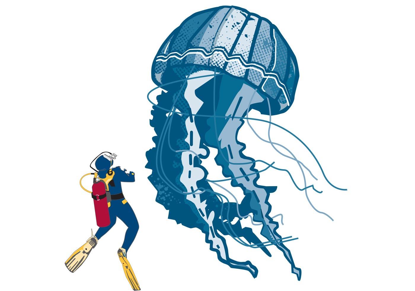 jellyfish free vector art 2361 free downloads rh vecteezy com jellyfish vector free jellyfish vectorial