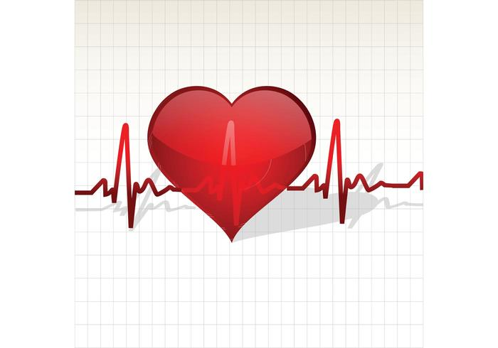 Heart with Life Line Vector