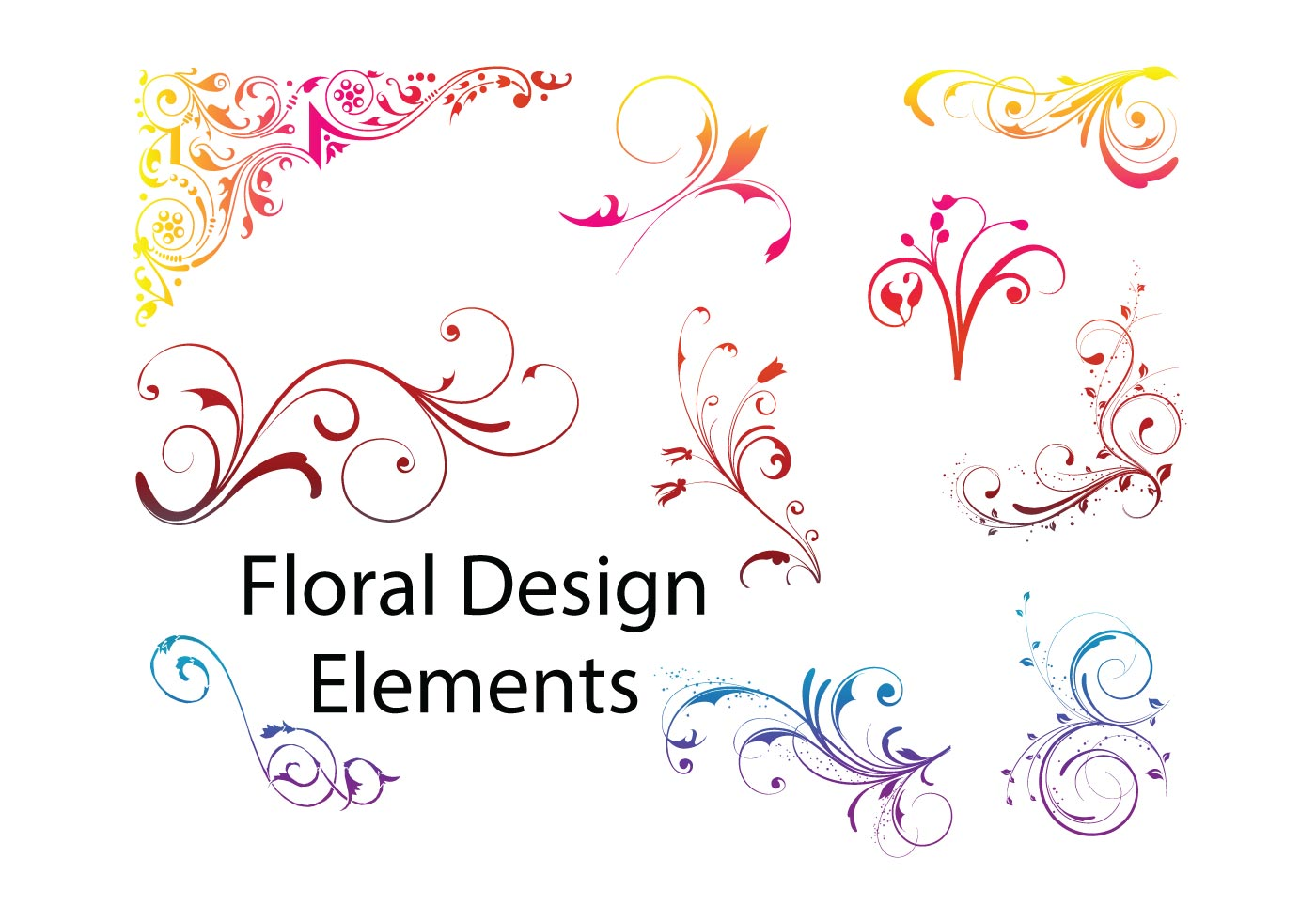 Elements For Design : Floral design elements download free vector art stock