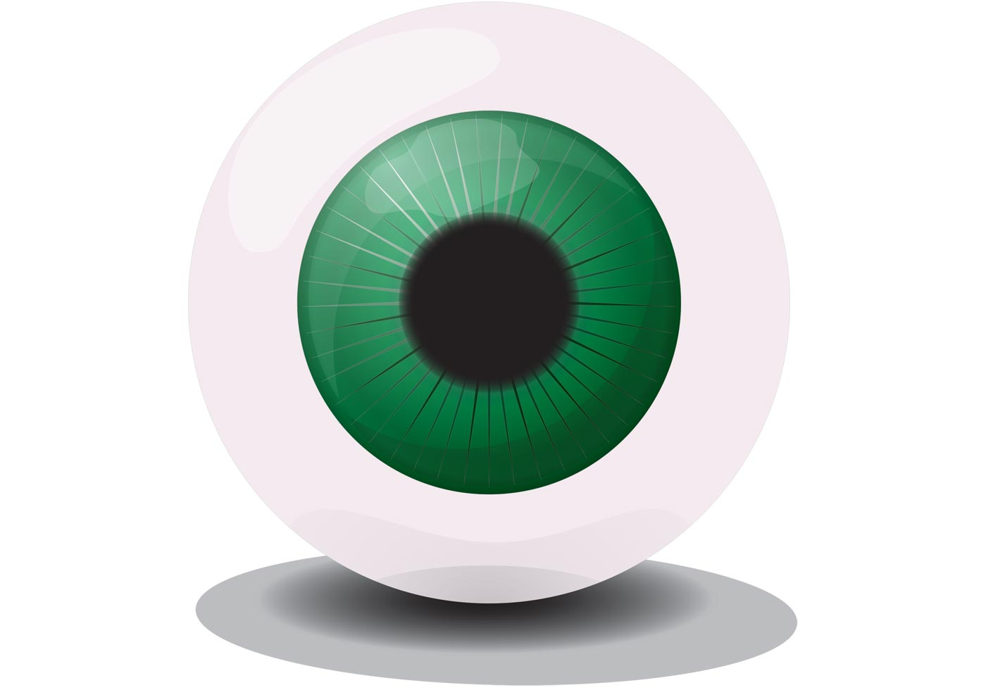 Free Eye Care For Adults
