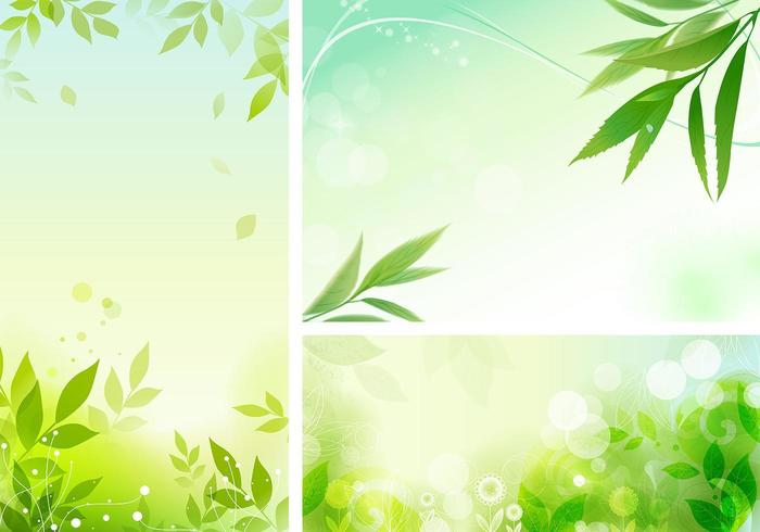 Leafy Orgánica Vector Wallpaper Pack