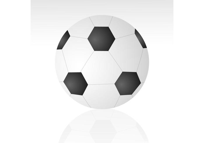 Ball Vector Soccer Ball