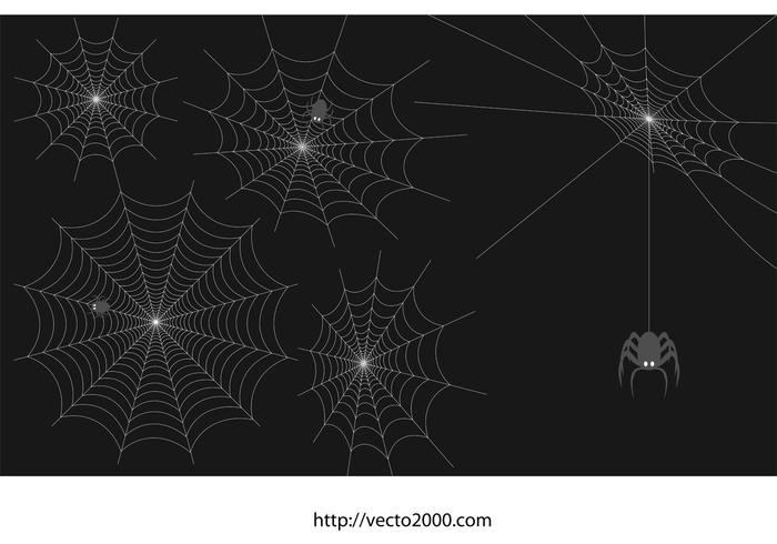 Spider Web Vector Set
