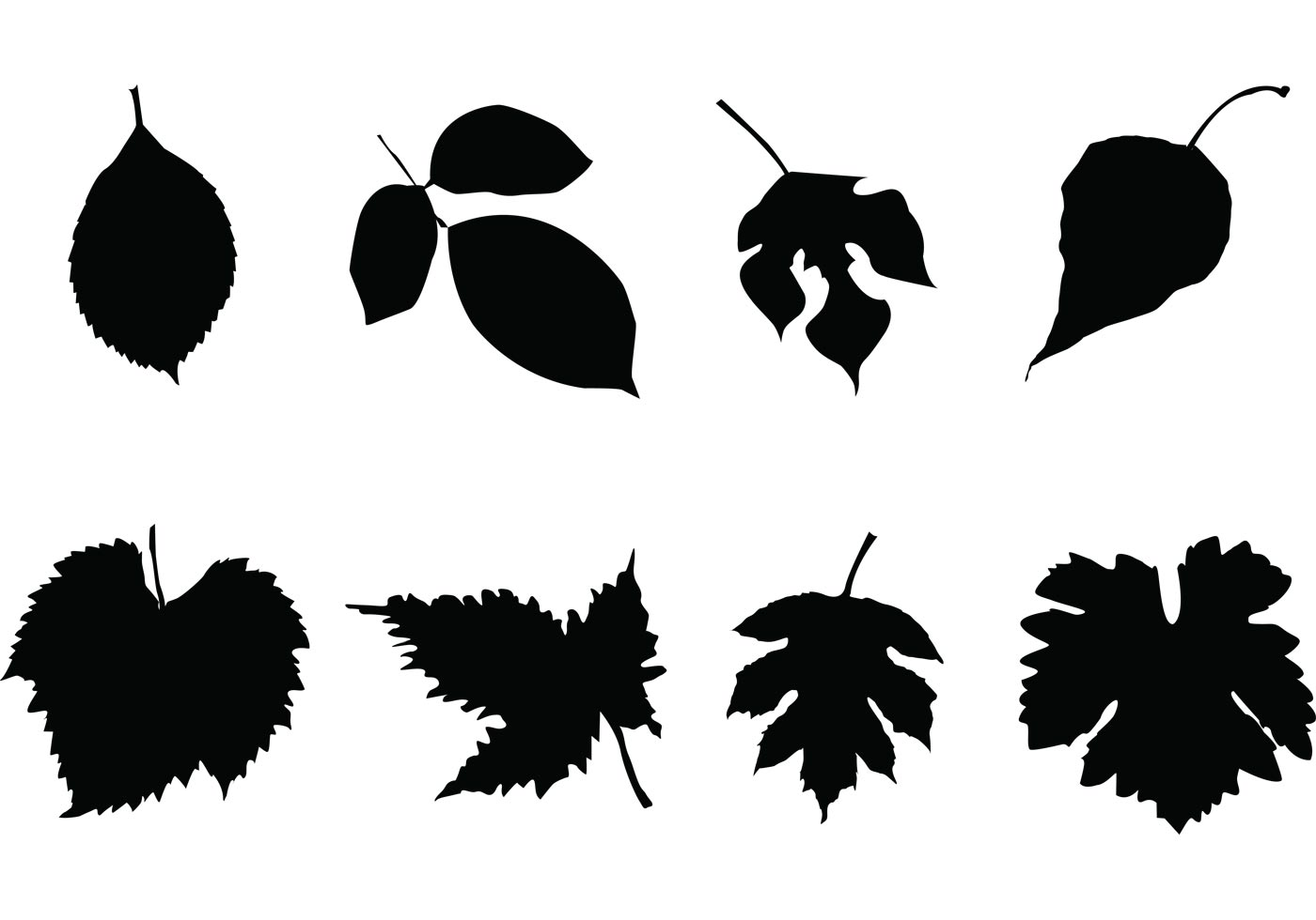 Free Leaf Silhouettes Vector Set Download Free Vector