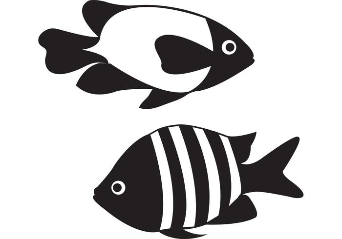 Aquarium Fish Vectors