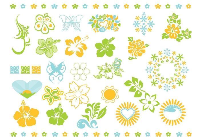 Pack de vectores de flores de verano