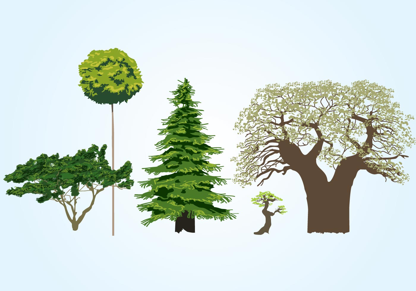 Vector Tree Collection - Download Free Vector Art, Stock ...