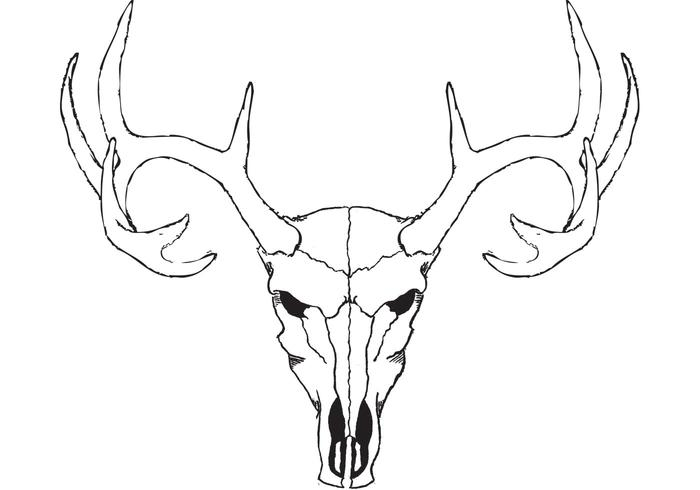 Image Result For Trophy Printable Coloring