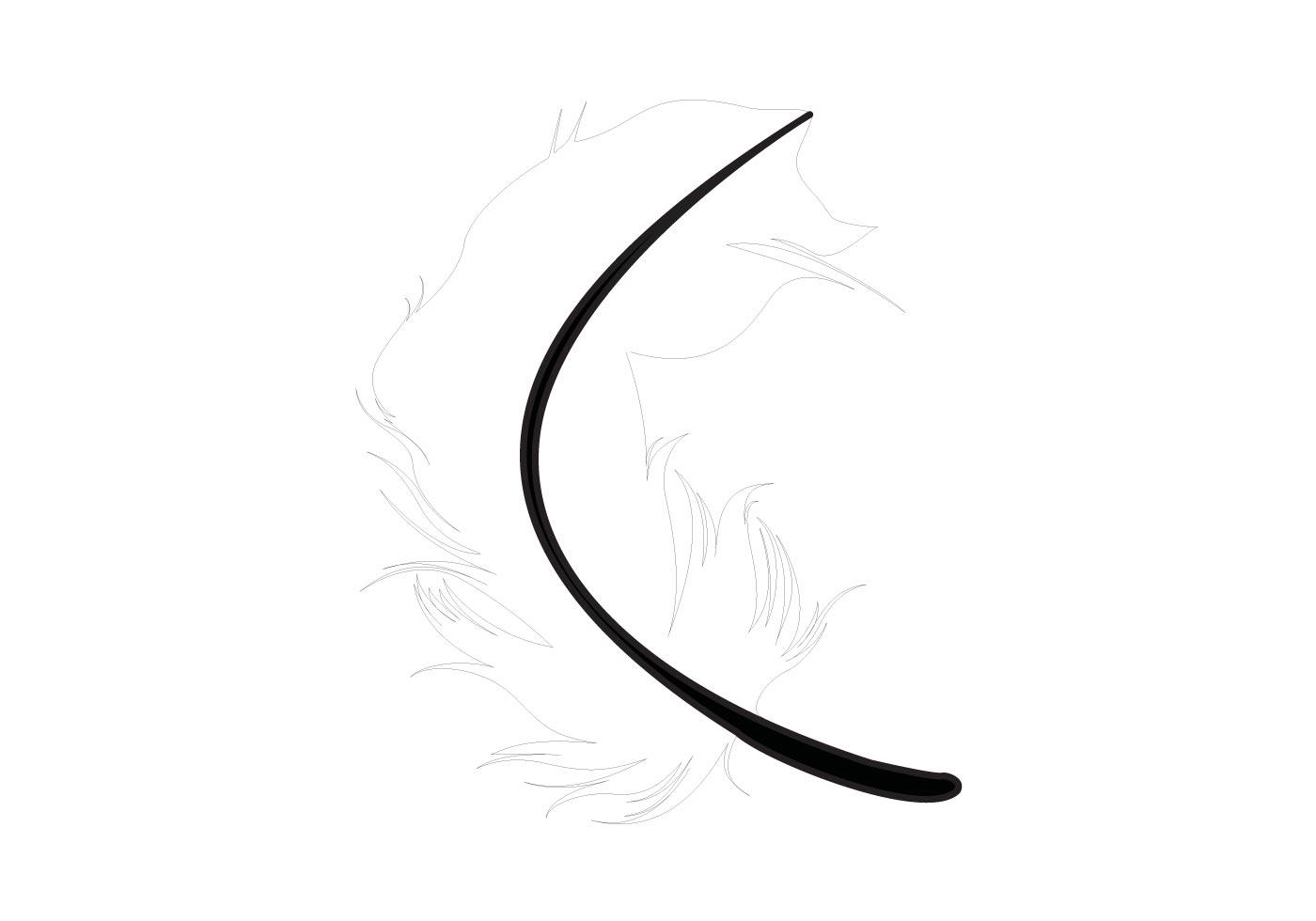 feather vector free vector art at vecteezy