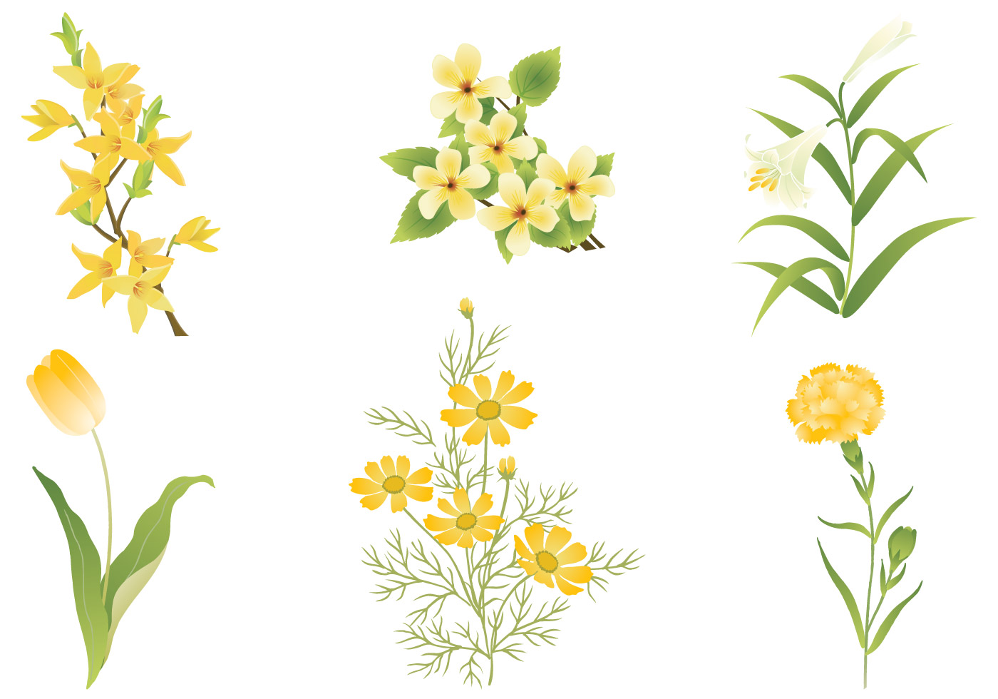 Yellow Flower Vector Pack Download Free Vector Art Stock Graphics