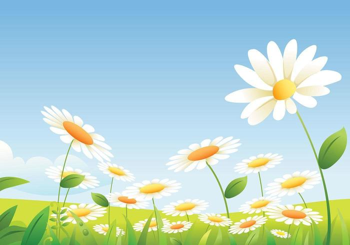 Daisy Landscape Vector Pack