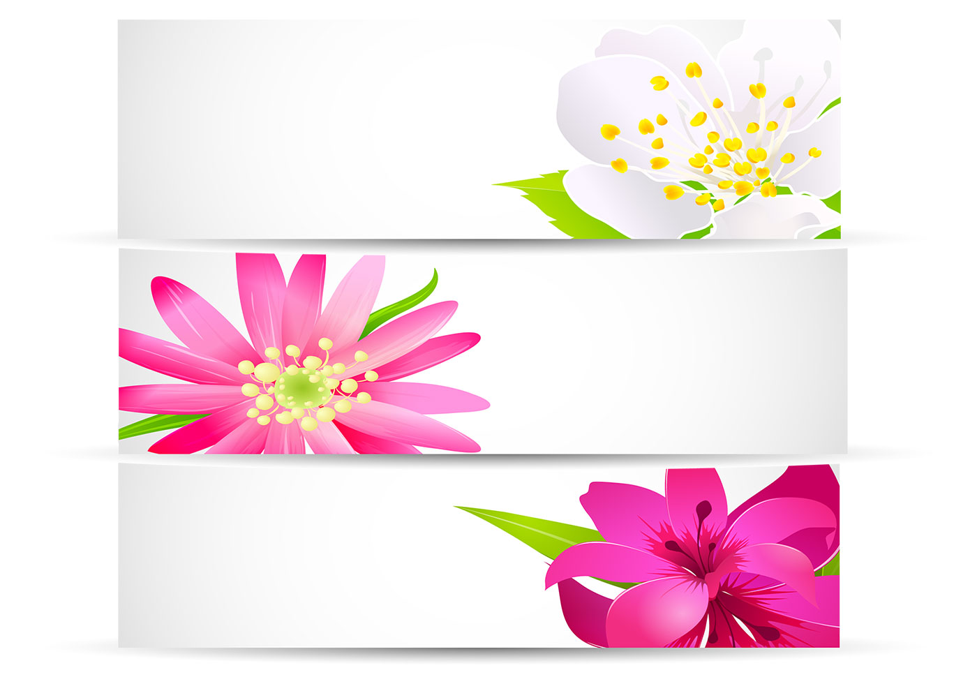 Bright Floral Banner Vector Pack - Download Free Vectors ...