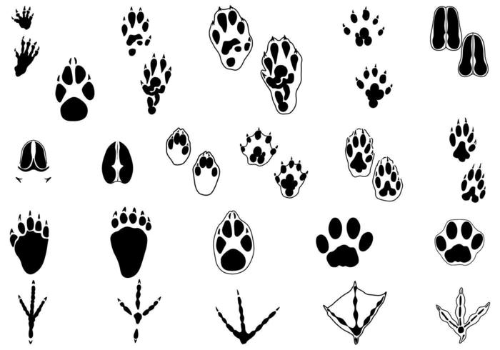 Animal Tracks Vector Pack Two