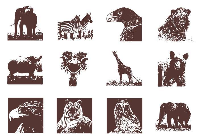Grunge Wild Animals Vector Pack