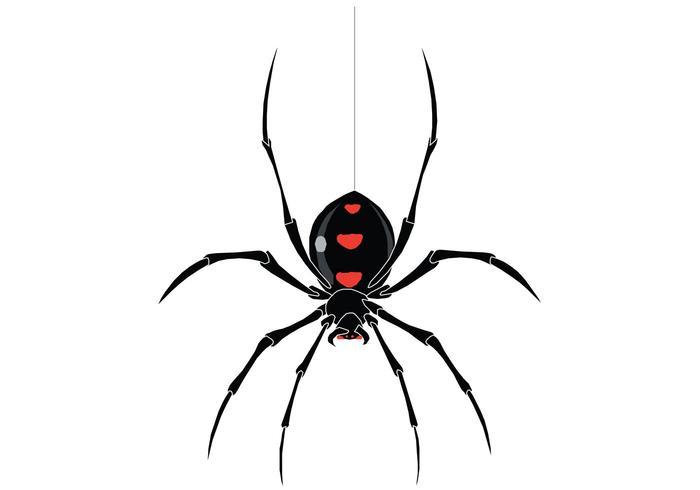 spider vector free vector art at vecteezy rh vecteezy com spider vectorpark spyder victor paintball gun