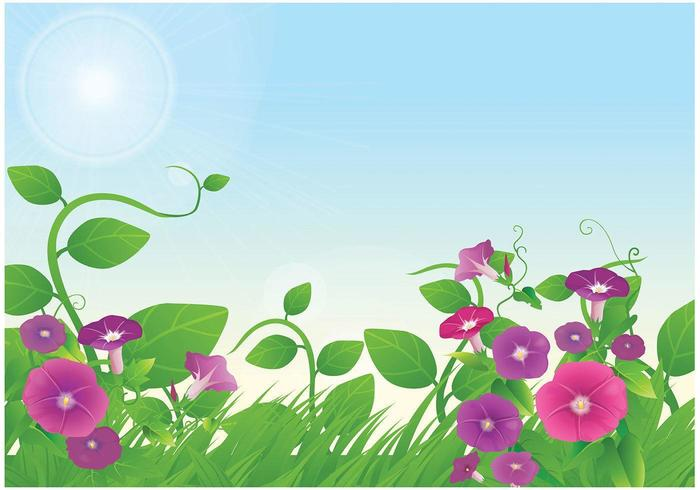 Morning Glory Floral Wallpaper Vector