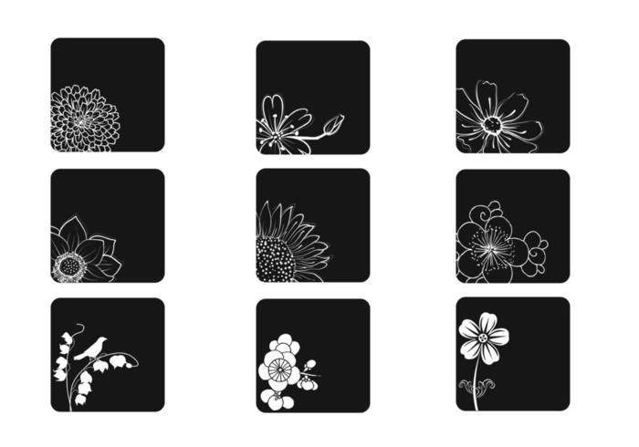 Ensemble vectoriel fleur et blanc et noir