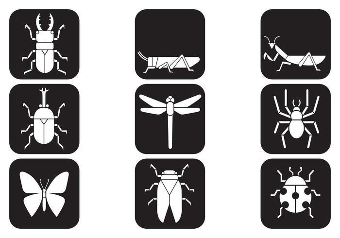 Pacote de ícones de vetores de insetos