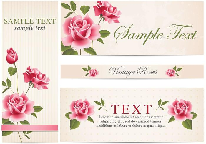 Vintage Rose Banner Vector Pack